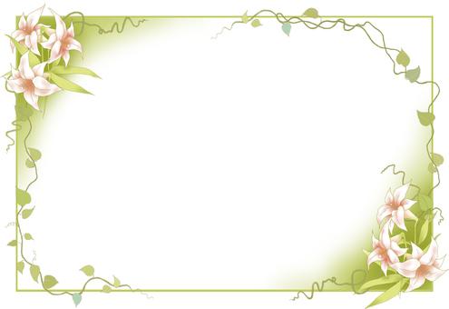 백합과 덩굴의 프레임 2