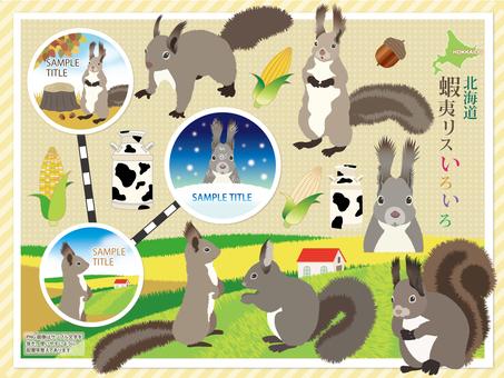Hokkaido Ezoris Variety Set