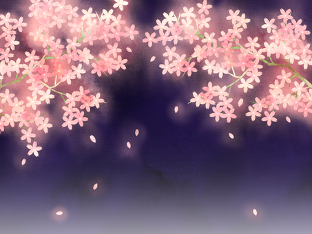 Night cherry background