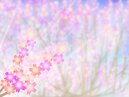 Cherry blossom background 50