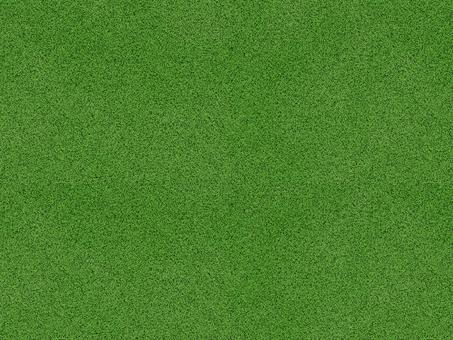 Texture Grass 1