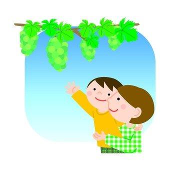 과일 따기