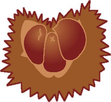 Chestnut -1
