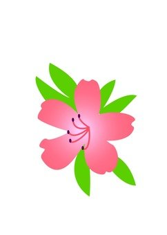 Azalea's flower