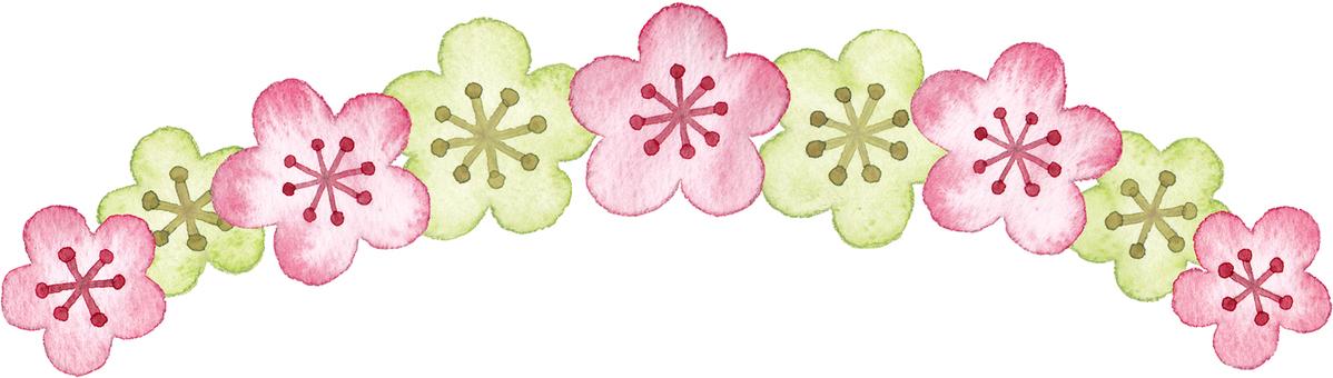 복숭아 꽃 라인
