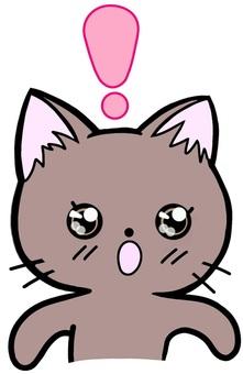 Exclamation mark surprised cat cat