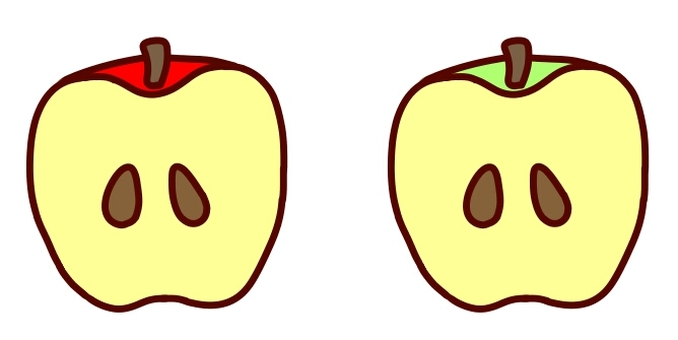 Cross section of apples