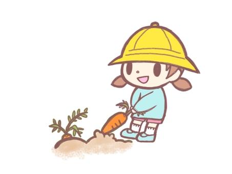 Carrot digging