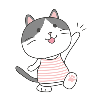 Hachiware Cat-chan Reply