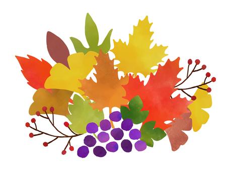 낙엽과 포도