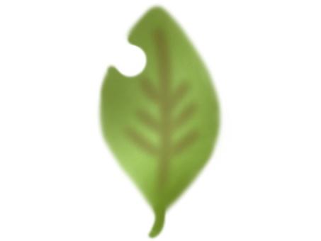 낙엽 (녹색)