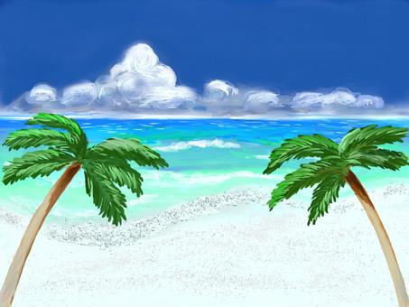 여름 배경 바다 01