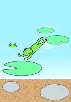 연못에 뛰어 오르는 개구리