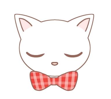 閉上眼睛貓