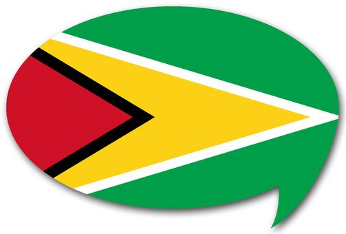 圭亞那國旗