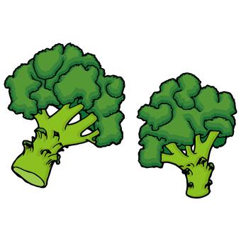 Broccoli / Buds Flower Palace / Broccoli