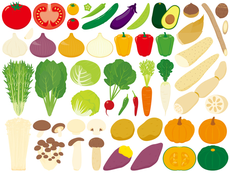 Various kinds of vegetables