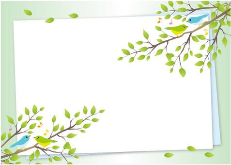 Bird's harmony background (green)