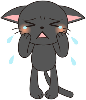 Crying black cat