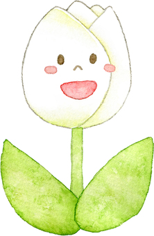 Tulip white (with a face)