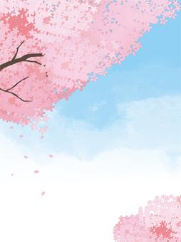Landscape ● Sakura