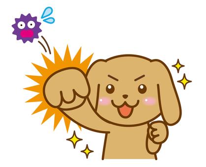 Virus fight dog