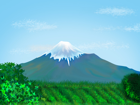 Mt. Fuji and idyllic landscape