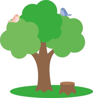 나무와 그루터기와 새