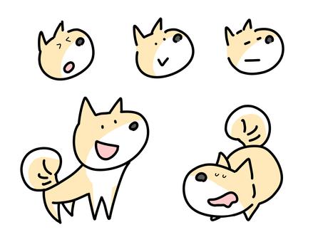 Smiling Shiba Inu