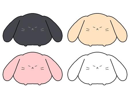Hanging ear rabbit summary