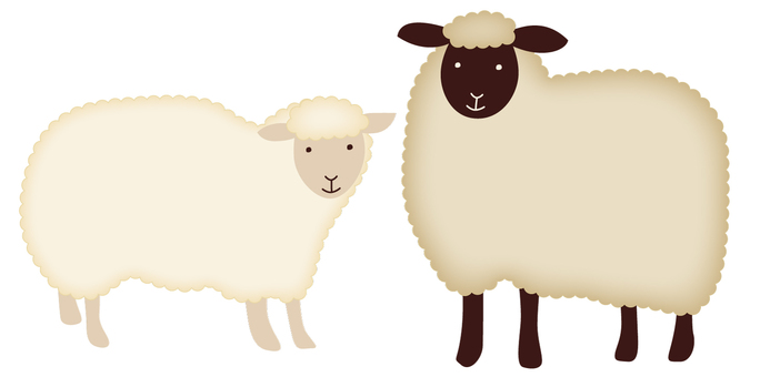 Sheep illustration 2