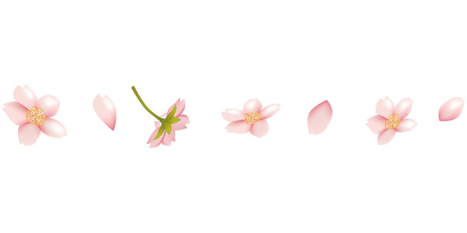 Spring · Sakura · cherry line
