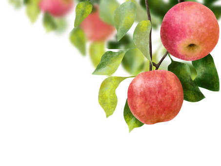 사과 따기 일러스트