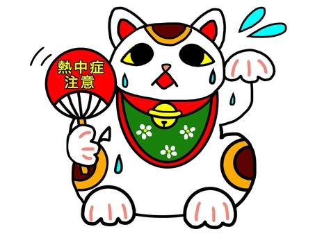 Heat stroke caution cat
