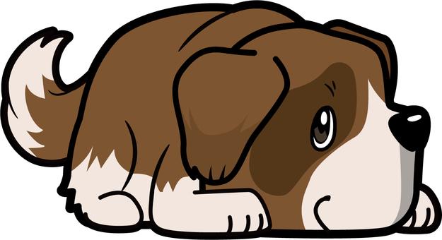 Dog _ St. Bernard