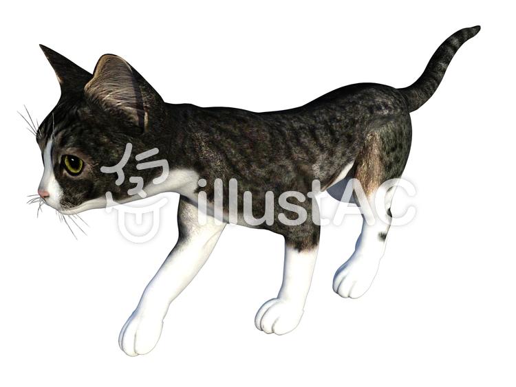 歩く子猫(トラ猫/グレイ)のイラスト