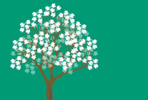 하얀 봄 꽃 목련 나무의 일러스트