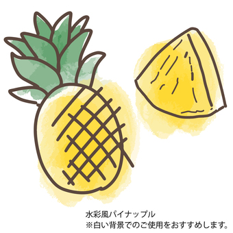 Watercolor style pineapple