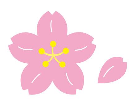 Sakura (Sakura) 2