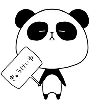 팬더 휴식 중