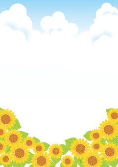 Sunflower and blue sky background 02