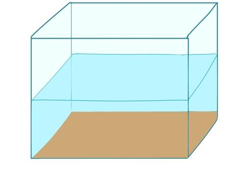 Aquarium from