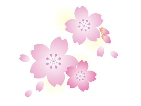 Cherry blossom pattern simple