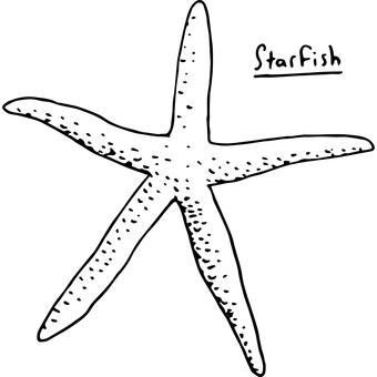 Vector illustration of a fashionable starfish