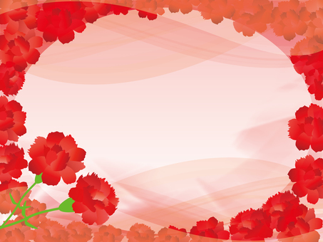 Carnation background 17022301