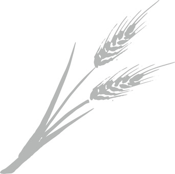Wheat a_ ash _cs