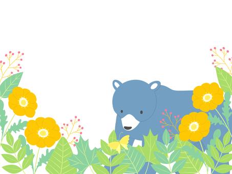 クマと蝶々