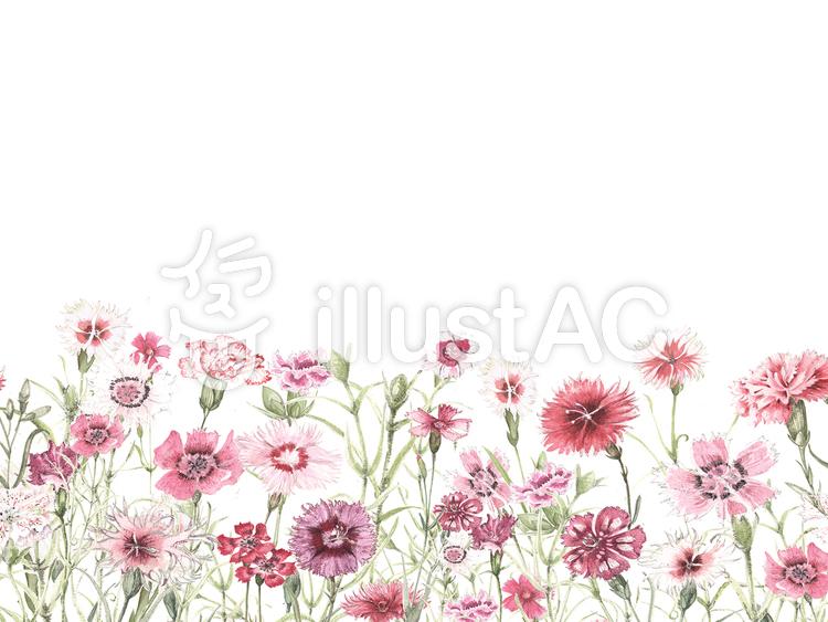 花枠332クラシックな色合いナデシコイラスト No 1045515無料