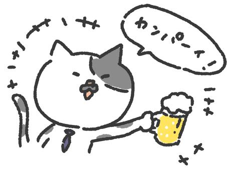 고양이 05