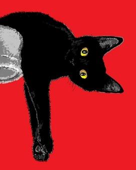 【Hot】 Cat Captar